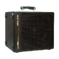 AER Amp One Bass Amp (200W)