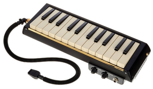 Hammond Melodion Pro 24B (With Built-in Microphone)