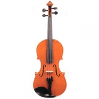 Stentor Arcadia 4/4 Size Violin (#1880A) With Carbon Bow & Oblong Case