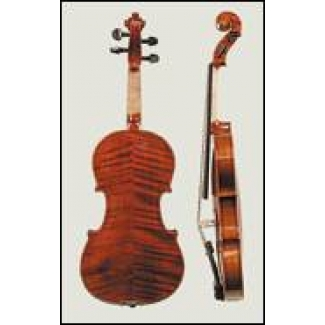 Stentor Elysia 4/4 Violin - Instrument Only (#1875A)