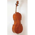 Stentor Arcadia Cello - Instrument Only (#1596)