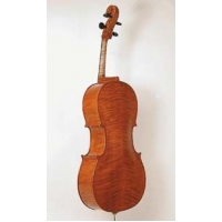 Stentor Elysia Cello - Instrument Only (#1591)