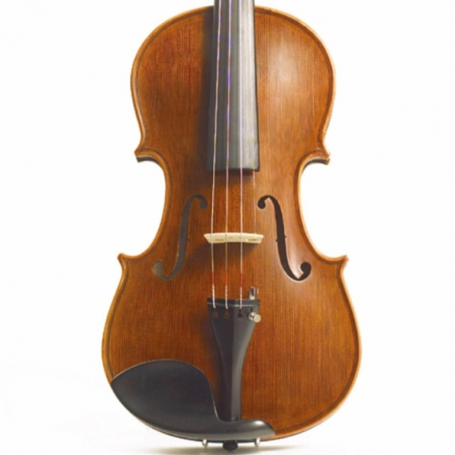 Full-size Stentor Elysia Violin Outfit With Bow, Case & Rosin #1875A
