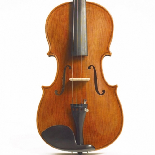 Stentor Elysia Viola Outfit With Bow, Oblong Case & Rosin #1876