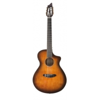 Breedlove Discovery Concert Nylon CE Electro Acoustic