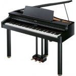 Roland RG1 FSB Digital Grand Piano