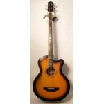 Levin LAB150 Acoustic 4 String Bass in Vintage Sunburst