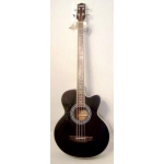 Levin LAB150 Acoustic 4 String Bass in Black