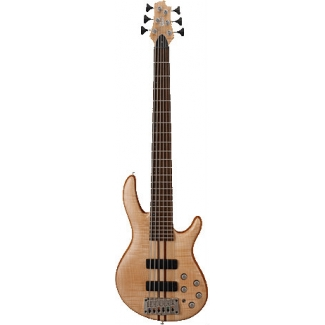 Cort A6 OPN 6 String Bass Guitar