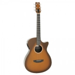RainSong APSE Al Petteway Special Edition All-Graphite OM Electro Acoustic
