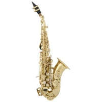 Arnold & Sons ASS101C Curved Soprano Saxophone With Mouthpiece & Sax Case