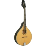 Ashbury AM-325 Octave Mandola