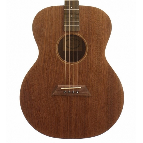 Ashbury AT24 Tenor Guitar in Solid Rosecherry (GR36114)