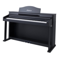 Bluthner e-Klavier 1 Digital Piano in Black Satin Laquered Cabinet