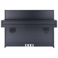 Bluthner e-Klavier 2 Digital Piano in Black Satin D-design Cabinet