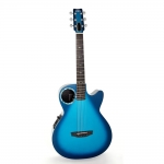 RainSong CO-WS1005NSM Concert Graphite Electro Acoustic with Offset Soundhole