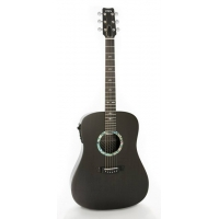 RainSong CO-DR1000N2 Concert Graphite Dreadnought Guitar
