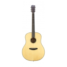 Breedlove Discovery Dreadnought Acoustic Guitar With Gig Bag