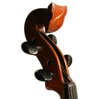 Bridge Tasman Electro Acoustic Violin