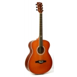 Eko TRI 018 Acoustic Guitar In Honey Burst
