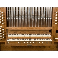 Viscount Envoy Positive Organ
