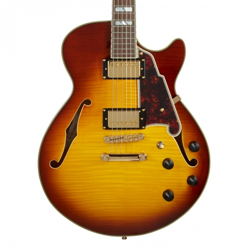D'AngelicoExcel SS Single Cut Hollow Body Guitar With Stopbar in Iced Tea Burst