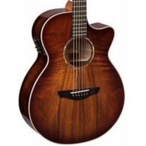 Faith FVBMB Blood Moon Venus Cutaway Electro Acoustic With Case
