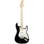 Fender Standard Stratocaster Electric Guitar in Black