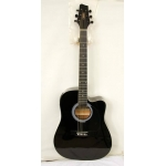 Levin SW203 CETU-BK  Electro Acoustic Guitar in Black