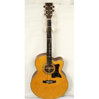 Tanglewood TW55-NS Electro Acoustic Guitar