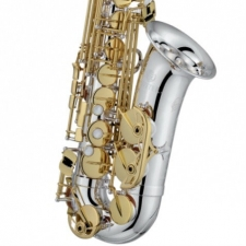 Jupiter JAS1100SGQ Alto Sax (Special Edition) With Mouthpiece & Softcase