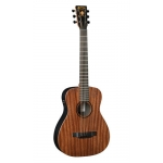 Martin LX1E Ed Sheeran Custom Signature Edition Electro Acoustic Guitar