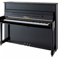 Bluthner Model C Upright Piano in Polished Black