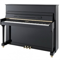 Irmler P118 Studio Series Upright Piano in Polished Black