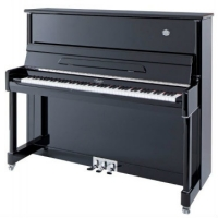 Irmler P125 Studio Series Upright Piano in Polished Black