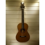 Patrick James Eggle Parlour Electro Acoustic Guitar With Hiscox Case