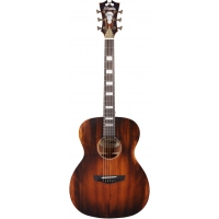 D'AngelicoPremier Tammany OM Electro Acoustic in Aged Mahogany