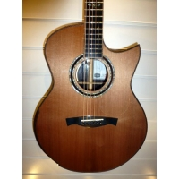 Maestro Raffles WE-CSB C Custom Small Jumbo Electro Acoustic Guitar With Case