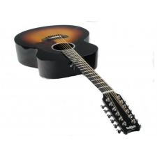RainSong N-JM3000X 12-String Nashville Series Electro Acoustic Guitar