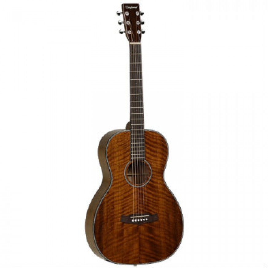 Tanglewood tw40 pd sundance delta parlour acoustic guitar for The tanglewood