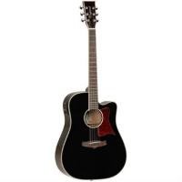 Tanglewood TW5 WB Winterleaf, Black Electro Acoustic