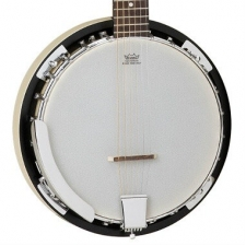 Tanglewood TWB18-M6 6 String Guitar Banjo with Resonator