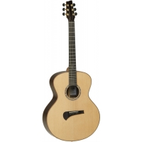 Tanglewood TSR 2 Michael Sanden Masterdesign Electro Acoustic With Case