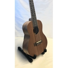Factory Prototype Concert Ukulele With Black Bag (Missing Bridge Dot Inlay)