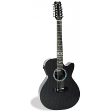 RainSong WS3000 Classic Graphite WS 12 String Electro Acoustic Guitar