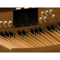 Viscount Envoy 350FV Classical Organ With 32 Note Pedalboard & Bench