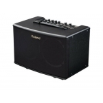 Roland AC40 Acoustic Chorus Guitar Amplifier