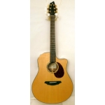 Breedlove AD25/SM Atlas Series Electro Acoustic Guitar