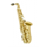 ANTIGUA 3100 Alto Saxophone with Contoured Case (AS3100LG)
