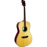 Ashbury AT-14 Tenor Guitar